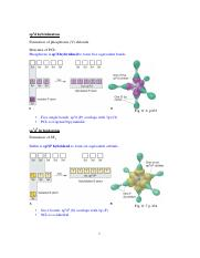 07 Theories of covalent bonding(VB)_2_Postlecture-2.pdf