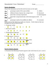Monohybrid-Cross-Homework.docx - Monohybrid Cross ...