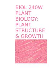 BIOL 240W PLANT STRUCTURE & GROWTH.docx