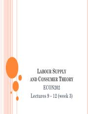 Consumer Theory and Labour Supply