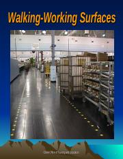 Walking and Working Surfaces.ppt