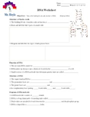 Dna And Dna Replication Worksheet Name Date Period 1 2 3 4 5 6 Dna