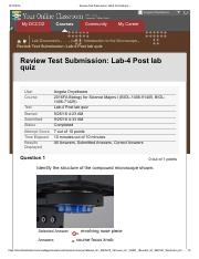 Review Test Submission_ Lab-4 Post lab quiz – .