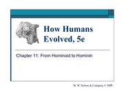 11_from_hominoid_to_hominin