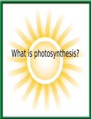 Chapter 7-Photosynthesis(2) (1)