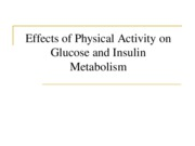 13 GLUCOSE & INSULIN METAB_SW-1.ppt