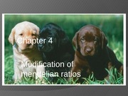 Lecture - Modification of Mendelian Ratios