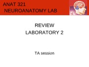 lab2-demoreview