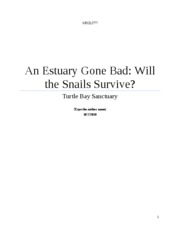 Estuary Lab Report [Everything]
