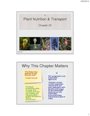 25_Plant+Nutrition+and+Transport_1note