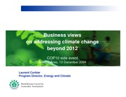 Business Views on Addressing Climate Change Beyond 2012