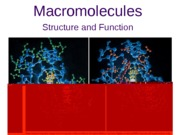 Lecture 3 Macromolecules for posting