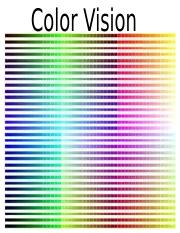 ColorVision2016.ppt