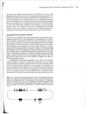 Web Notes #14 Supplement 2013