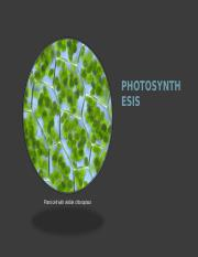 2. Photosynthesis.ppt