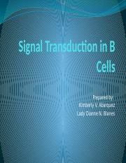 B-cell Transduction