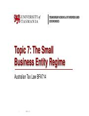 The Small Business Entity Regime 218.pdf