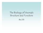 BIO 213-F09 - Lecture 5 - The Systems of Animal Structure & Function