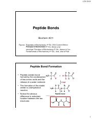 Chapter 4 Peptide Bond and Protein Structure (1).pdf