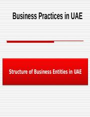 PPT Chapter S1  Structure of Business Entities in UAE.ppt