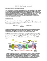 Bio 3465 - Lab 8 - Photosynthesis - Light reactions