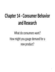 Chapter 14 - Consumer Behavior and Research.blanks.pptx