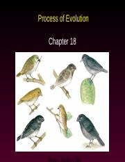 AP Ch. 18--Process of Evolution