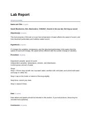 lab_report.odt