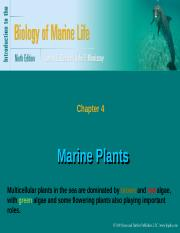 Revised%20Ch4%20MarinePlantsMSCI1501Full-DAE