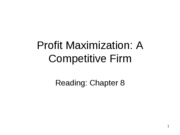 14-Competitive Firm