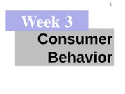 - Week 3 Consumer Behavior