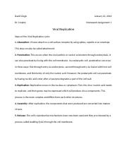 Homework 1 Viral Replication.docx
