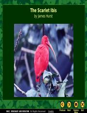 Scarlet Ibis_Theme, Symbolism, Inference.ppt