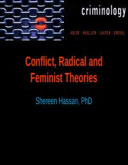Chapter_8_Conflict_Radical_Feminist_Reformatted