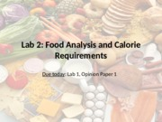 Lab+2+Food+Analysis%2C+Cal+Req+_1_-4.ppt