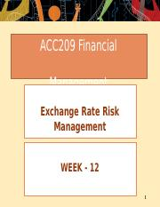 Week 12 - Exchange rate risk management.pptx
