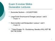 Exam 3 Review Material