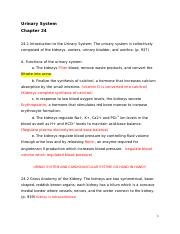 Chapter 24 Urinary System_blanks