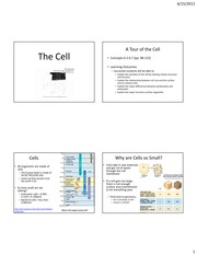 Biology Chapter 4 Lecture Slides