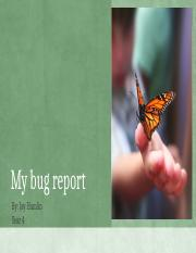 My bug report.pptx