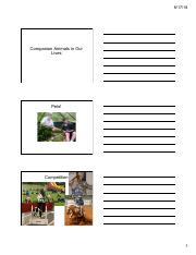 Companion Animals in Our Lives2018 student.pdf