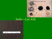 H100Lec#16On Soils
