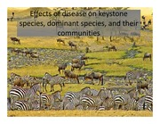 8. Effects of disease on keystone species (notes version)