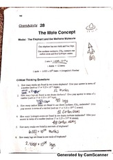 The Mole Concept Activity