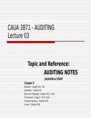 AUA3871_Lecture_slide_03__AN__Ch_9____Computer_Audit_Networks_and_Related_Concepts