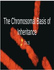 Ch.15 The Chromosomal Basis of Inheritance.pptx
