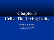 Chapter 3 Cells The Living Units