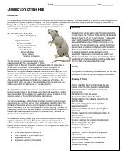 rat_entire_dissection (1).pdf