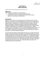 DNA Extraction protocol.pdf