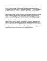 Dna replication essay